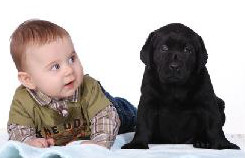 Puppy and baby - Parasite Control